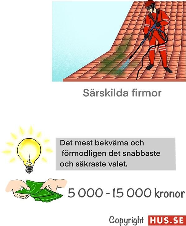 Företag ta bort mosa på tak